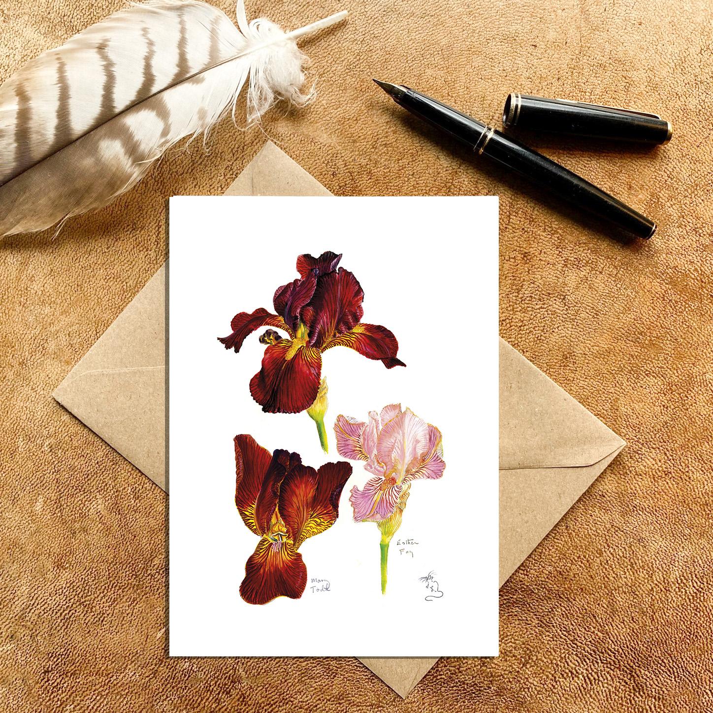 Irises Mary Todd & Esther Fay Card