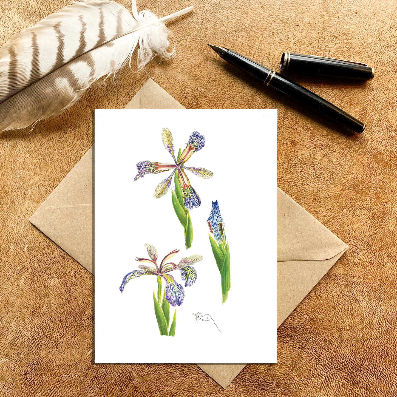 Miniature Blue veined Iris Card